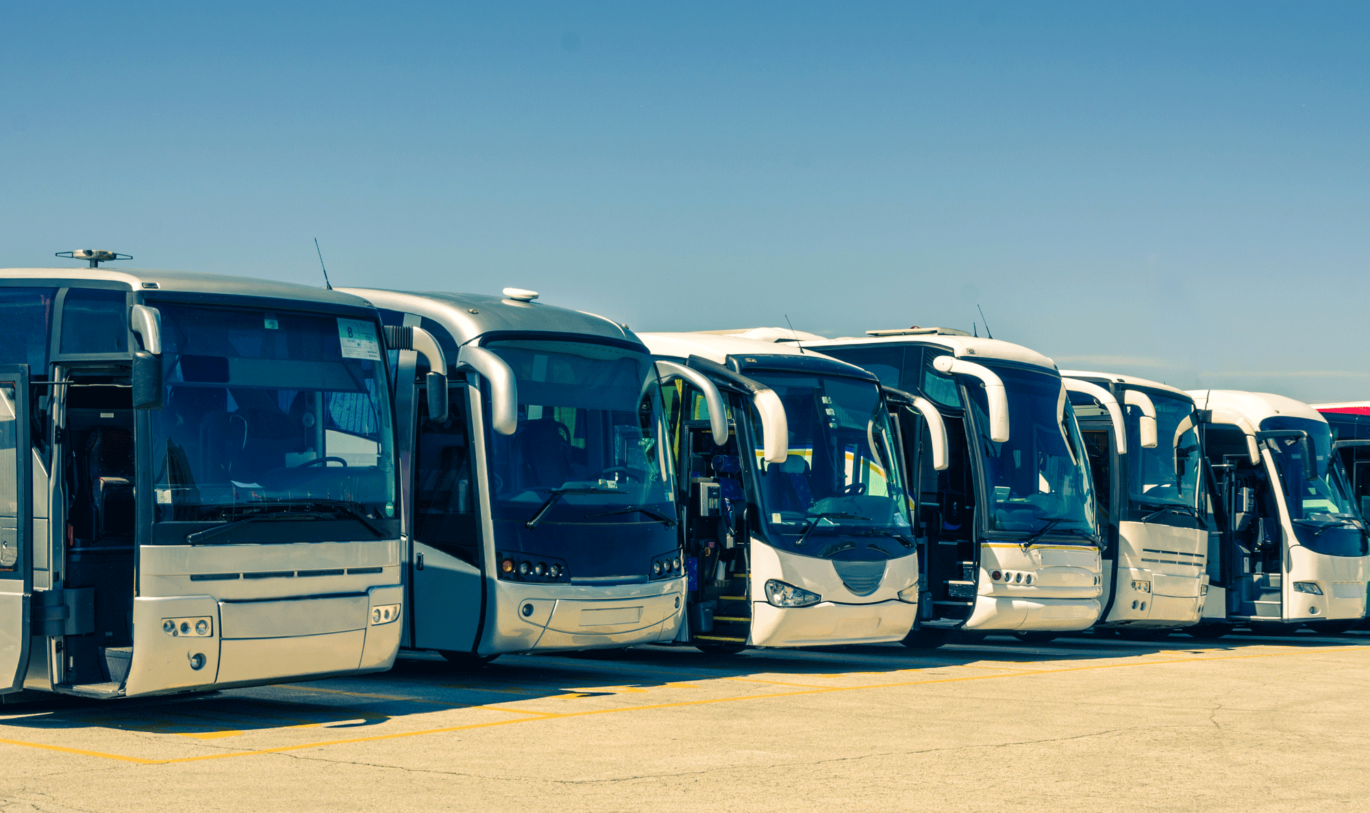 Coach-Buses jobs